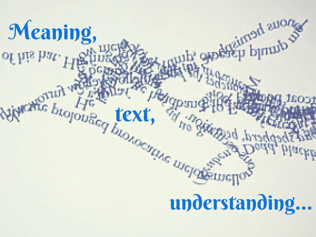 Meaning Text Understanding Teodora Petkova