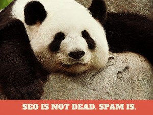 SEO is not Dead Spam is