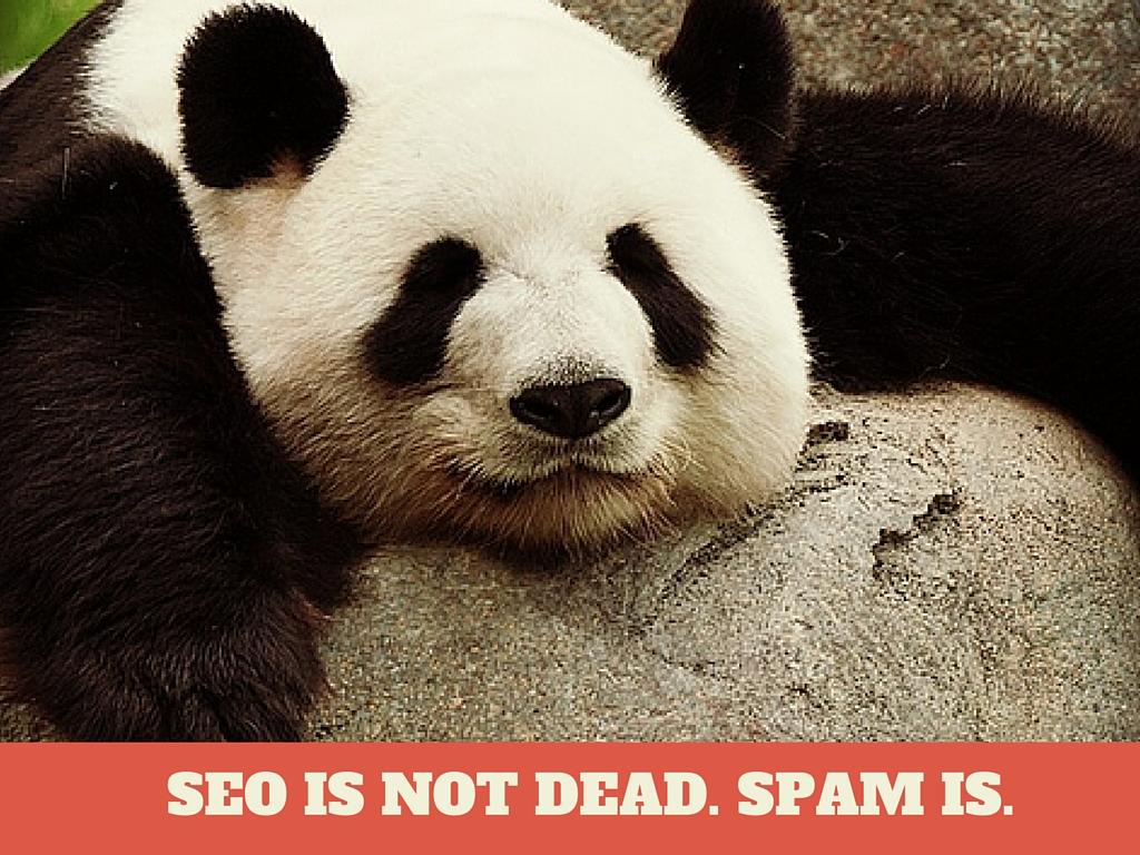 SEO is not Dead Spam is